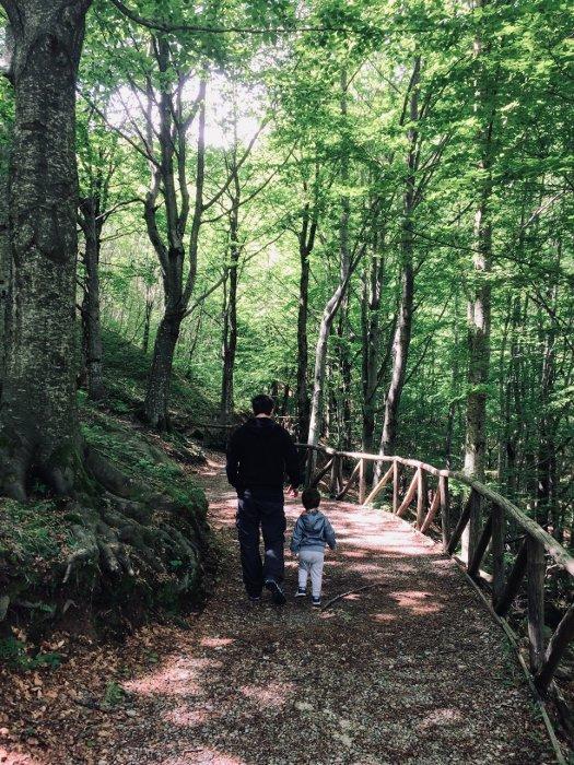 La Cascata del Doccione e il sentiero