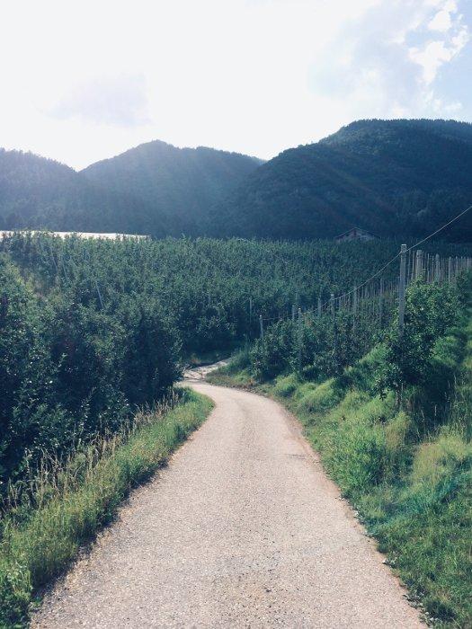 Il sentiero per il parco Splazoi