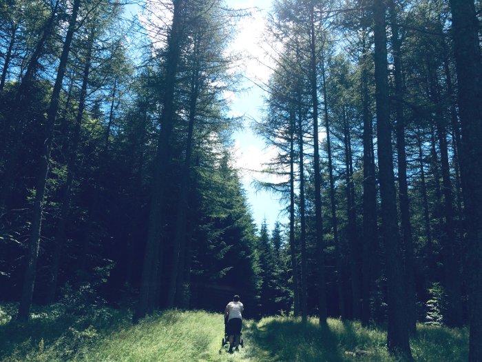 Passeggiata nel bosco in famiglia