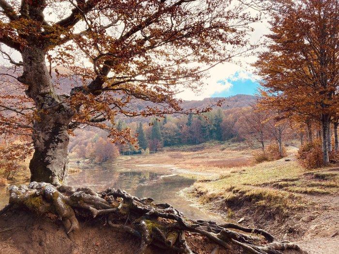 I colori dell'autunno in Appennino