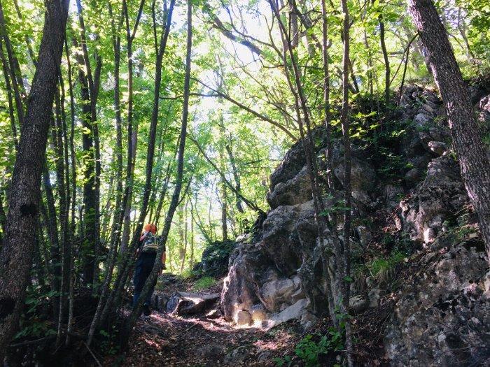 Nei boschi del monte Valestra