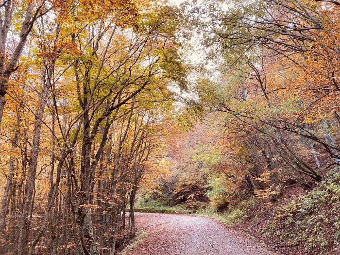 Il sentiero per il lago Calamone