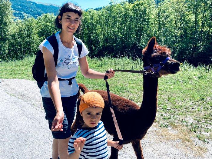 Gli alpaca di MairAlpaca di Canosio