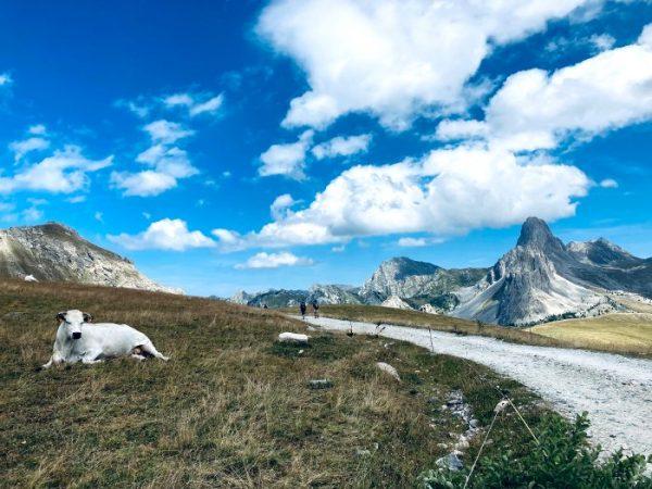 trekking per famiglie in val maira