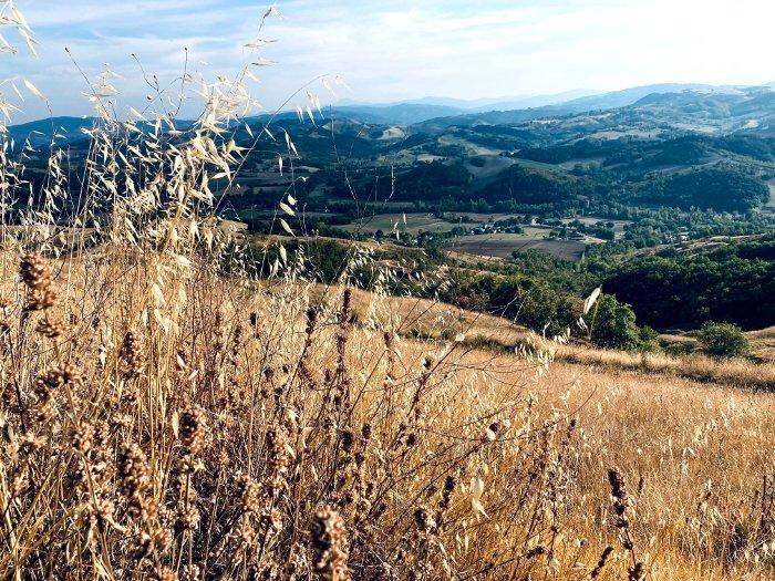 La collina Reggiana