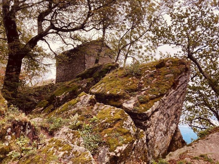 Monte Penna nelle Foreste Casentinesi
